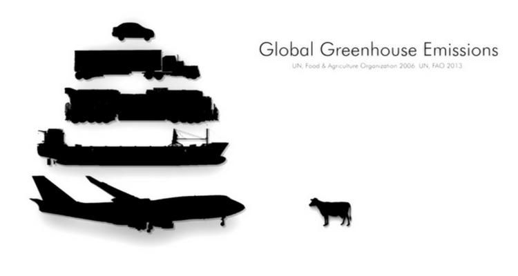 Emissile de gaze cu efect de sera - UN 2006 FOA 2013