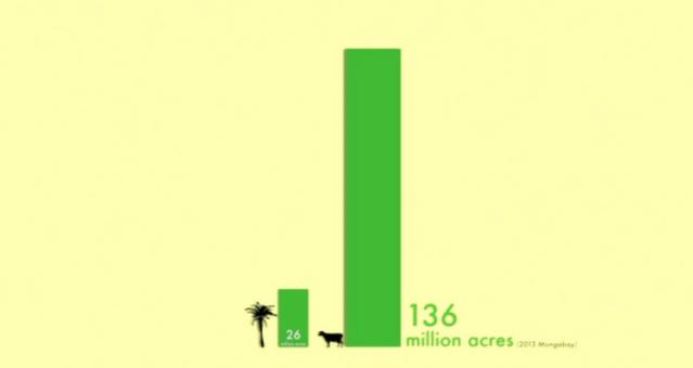 Taierea palmierilor si agricultura