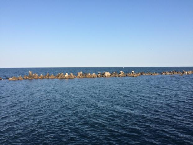 Dig de suprafață - Mamaia