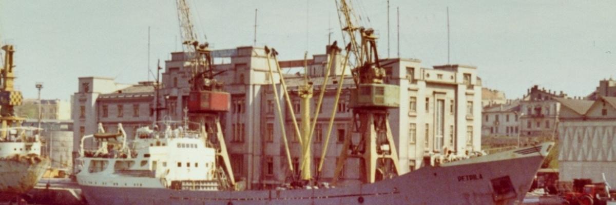 Cargoul Petrila